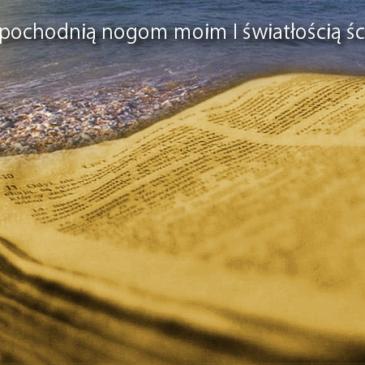 Czy tylko Świadkowie Jehowy rosną liczebnie i głoszą Ewangelię? Natan Chesed